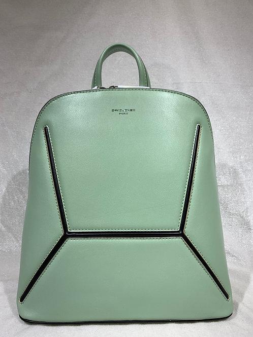 David Jones Backpack 6261-2 GN