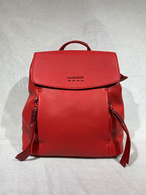 David Jones Backpack 6276-2 RD