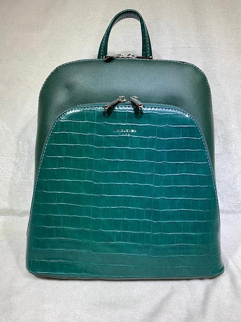 David Jones Backpack CM5615 GN