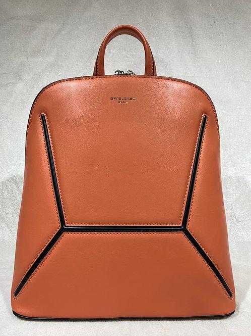 David Jones Backpack 6261-2 CR