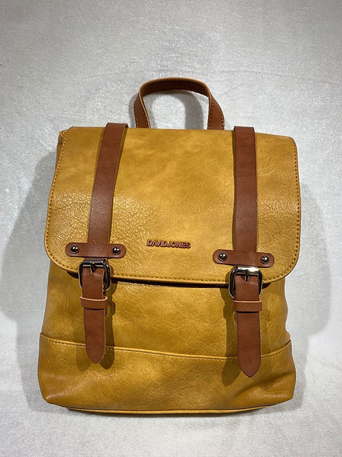 David Jones Backpack 6311-2 YL