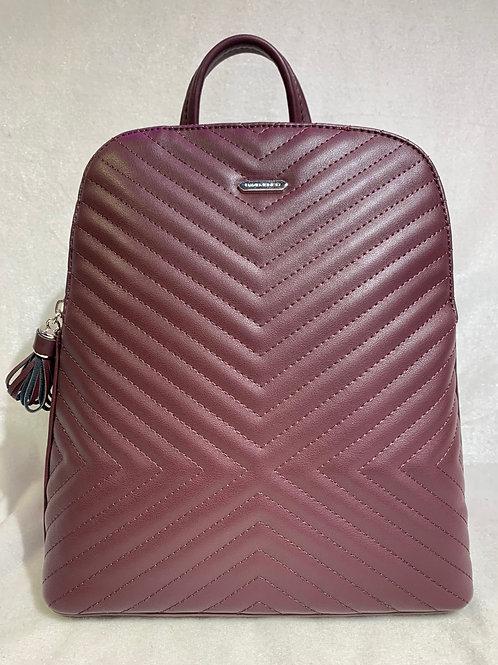 David Jones Backpack 6146-2
