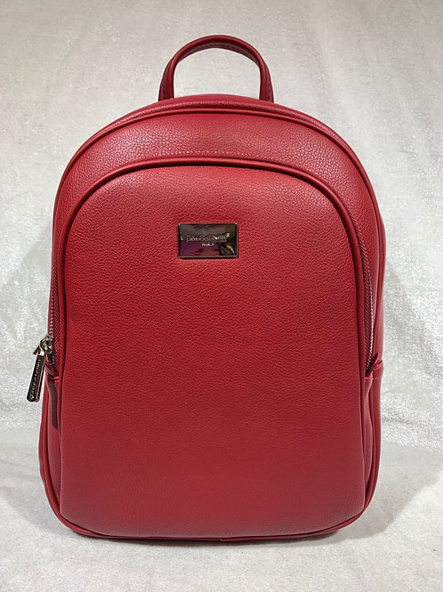 DAVID JONES DESIGNER INSPIRED STYLISH BACKPACK RD