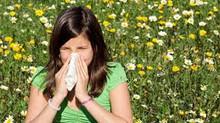 Descubre las 7 recomendaciones de FARMACIA AMIGA para combatir la Alergia primaveral