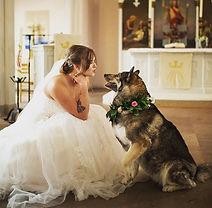 Tierische Hochzeitsbilder
