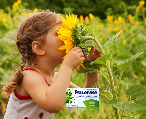 Pollenase_Mood.png