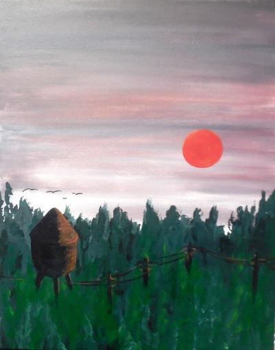 Forrest Sunrise
