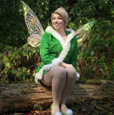 Winter Tinker Fairy