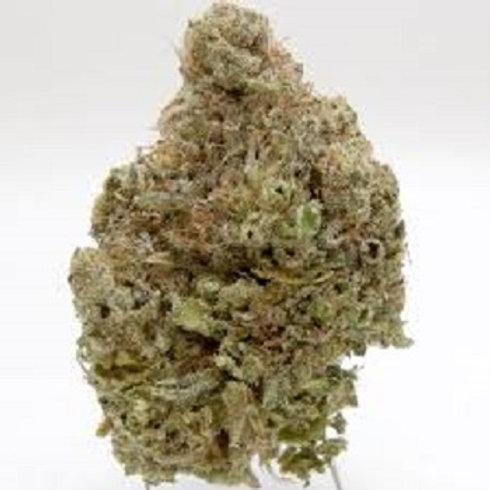 Hawaiian Dutch weed
