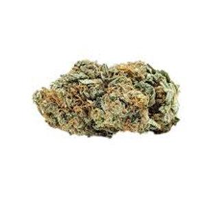 Western Winds marijuana strain