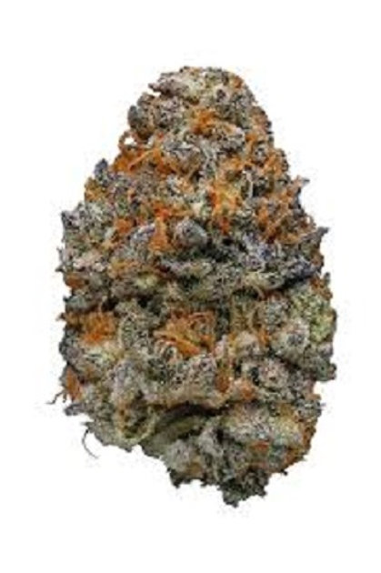Mendo Breath marijuana