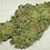Thumbnail: Loud Dream marijuana