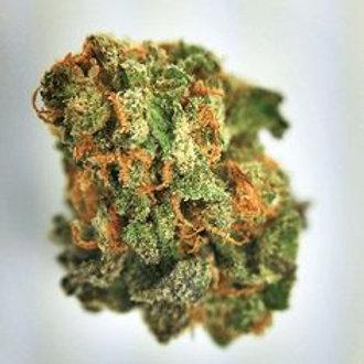 PineappleTrainwreckmarijuana strain