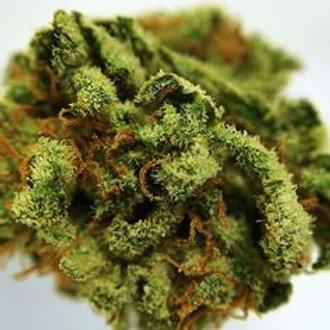 ConspiracyKush marijuanastrain