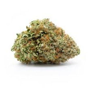Candida marijuanastrain