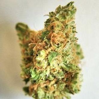 God Bud marijuana strain