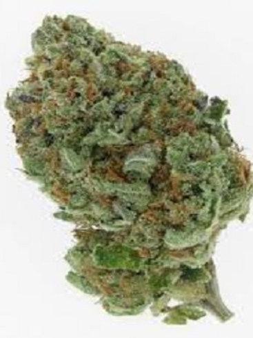 Tahoe Alien weed