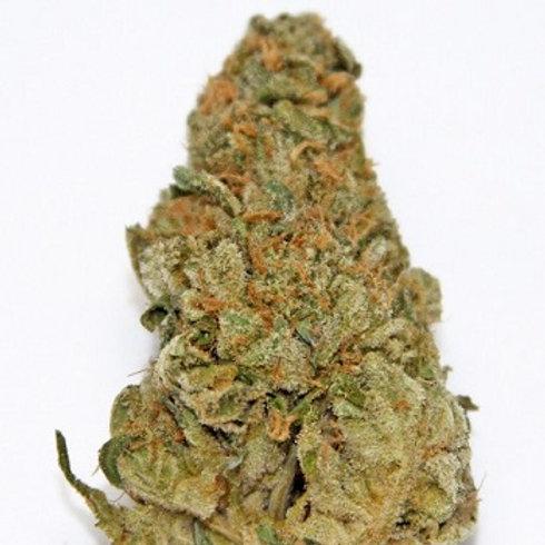 Sour Girl marijuana