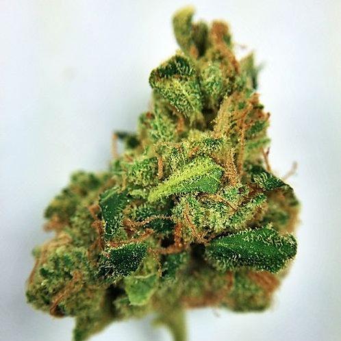 The One marijuanastrain