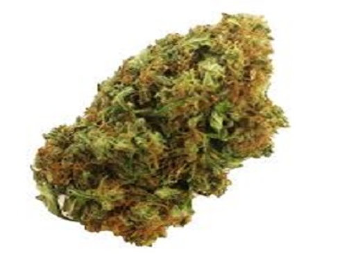 Mango Haze weed