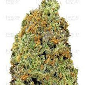 Black 84 marijuana
