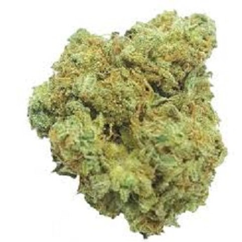 Moby Dick's Weed