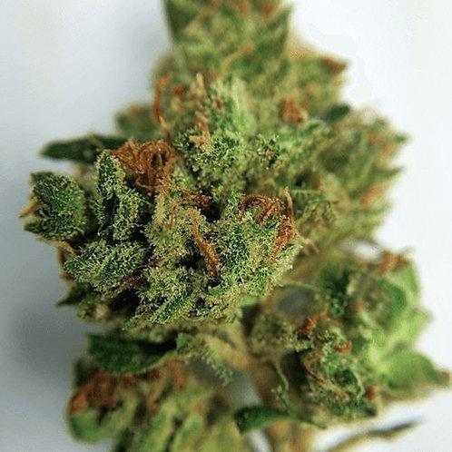 Vertigo marijuanastrain