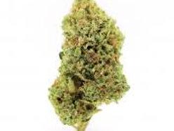 Zeppelin marijuanastrain