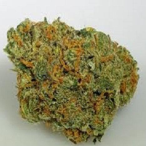 Chocolope weed