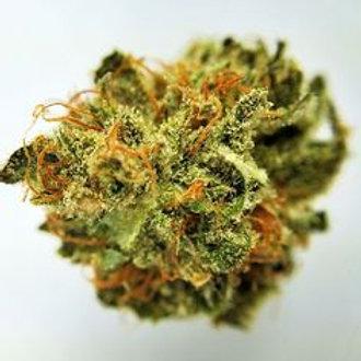 Cream Caramel marijuanastrain