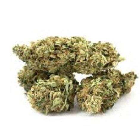 Super Jack Marijuana Strain