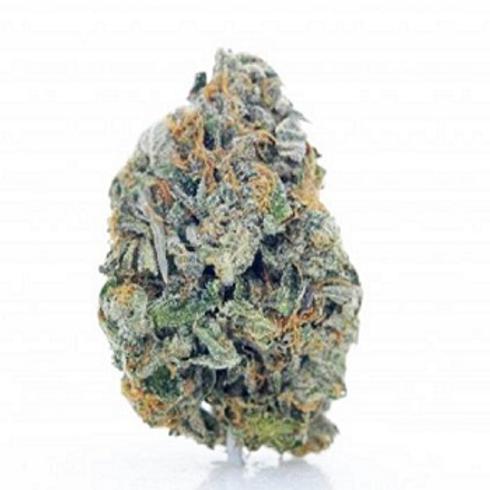 Buy Sensi Star marijuana Online
