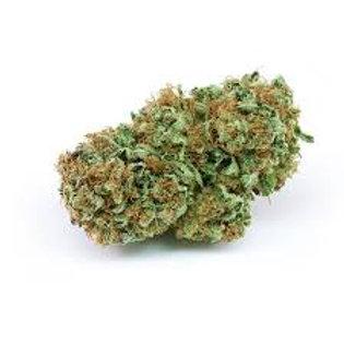 Sand Storm marijuana