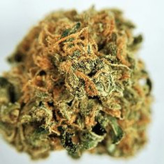 Mega Jackpot marijuana strain