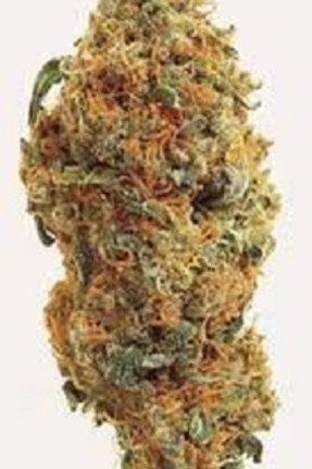 Blue Velvet marijuana