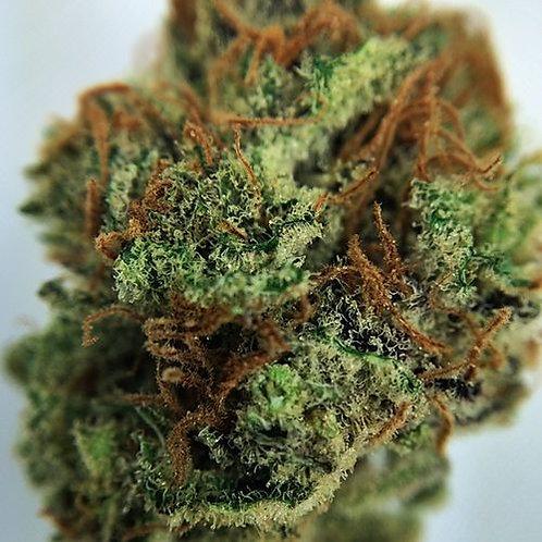 Cannatonic marijuana strain