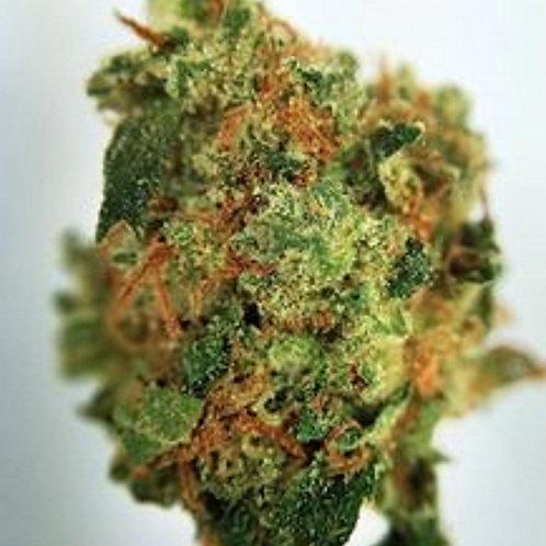 PurplePussy weed strain