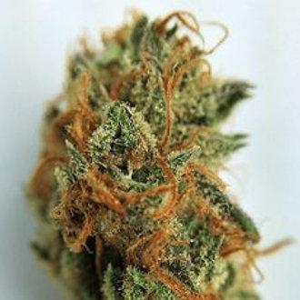 Electric Avenue marijuana