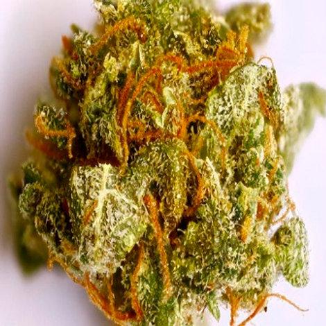 Colombian Gold Marijuana