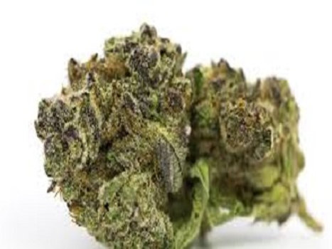 Ghost Train Haze weed