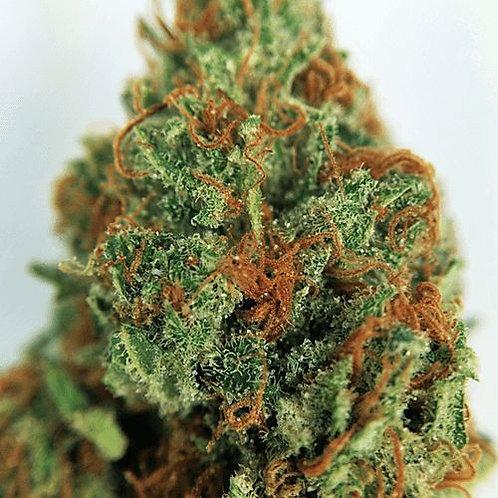 EarthOGmarijuana strain