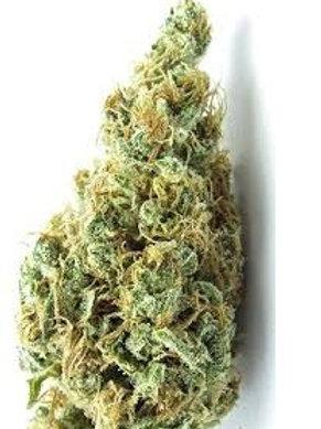 Ultimate Train Wreck marijuana strain