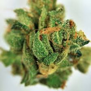 Vietnamese Mindfuck marijuanaStrain