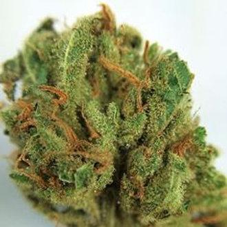 Fruit marijuana strain