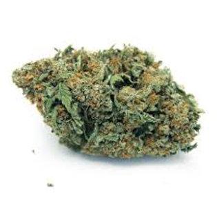 Appalachia weedstrain