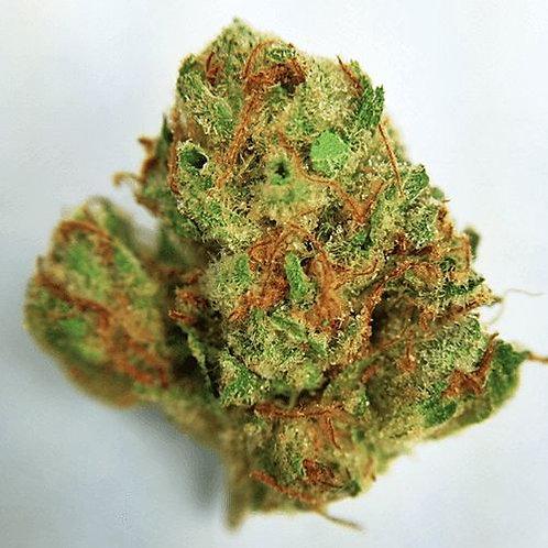 AK-48 marijuana strain