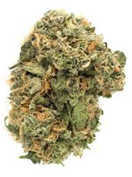 Blue Frost weed