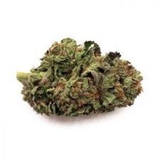 Opium marijuana strain