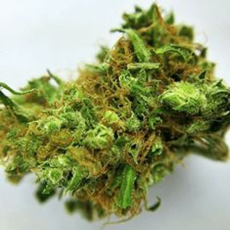 Blue Magoo marijuana