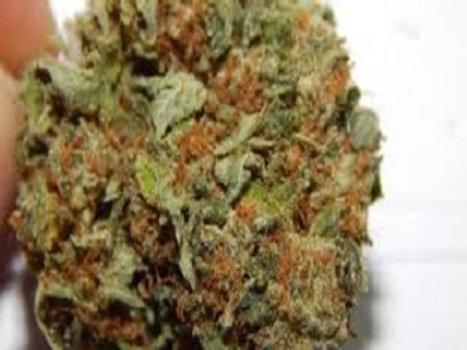 Deadhead OG weed